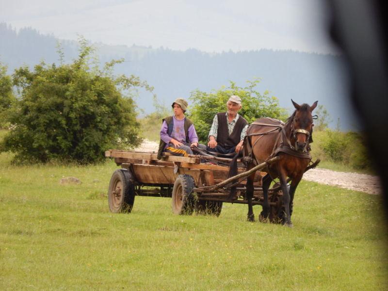 Enkel und Großvater fahren