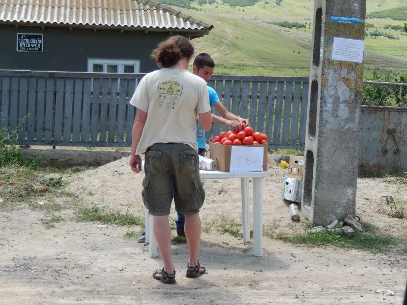 täglich kaufen wir lecker Tomaten