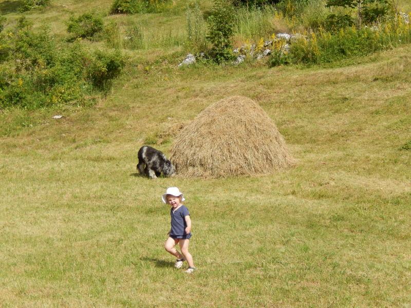 Kind und Hund zum Beine vertreten