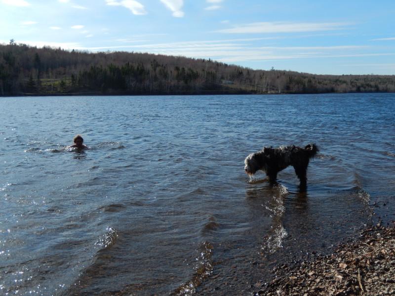 wieder See mit anbaden