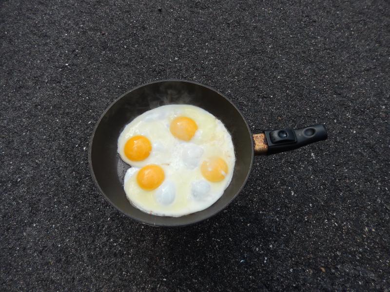 mit Eiern von der Farm