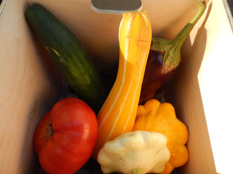 geschenktes Gemüse