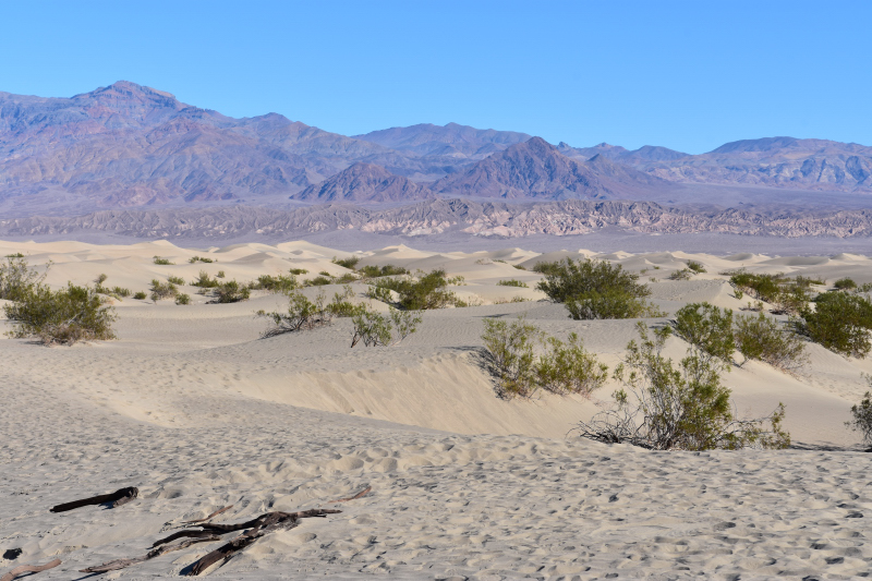 30 m hohe Sanddünen