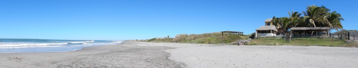 am Golf von Californien