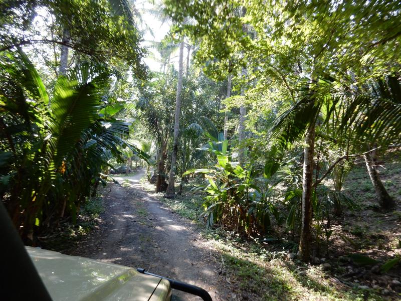 Weg zum Campingplatz