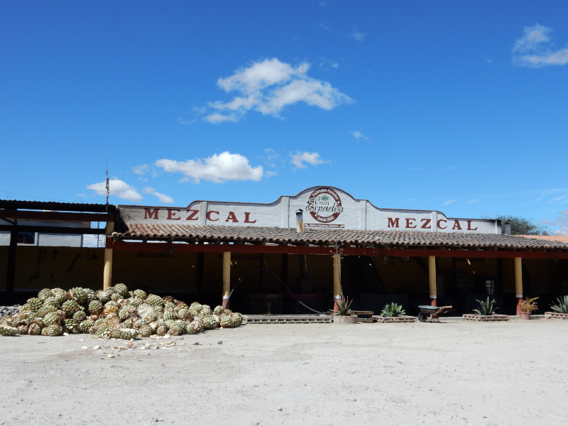 Mezcal Fabrik
