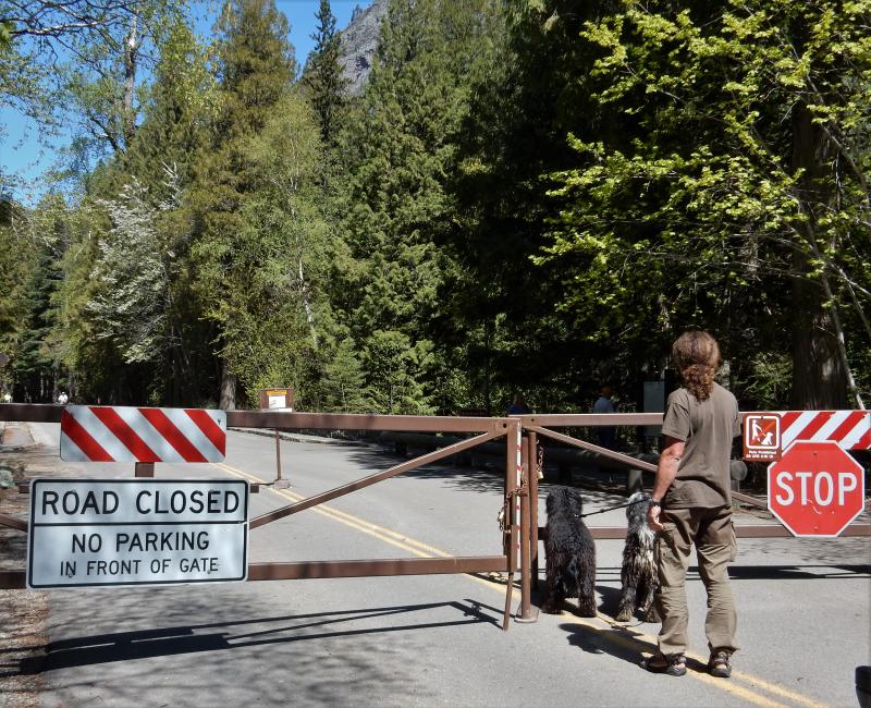 Logan Pass ist noch geschlossen