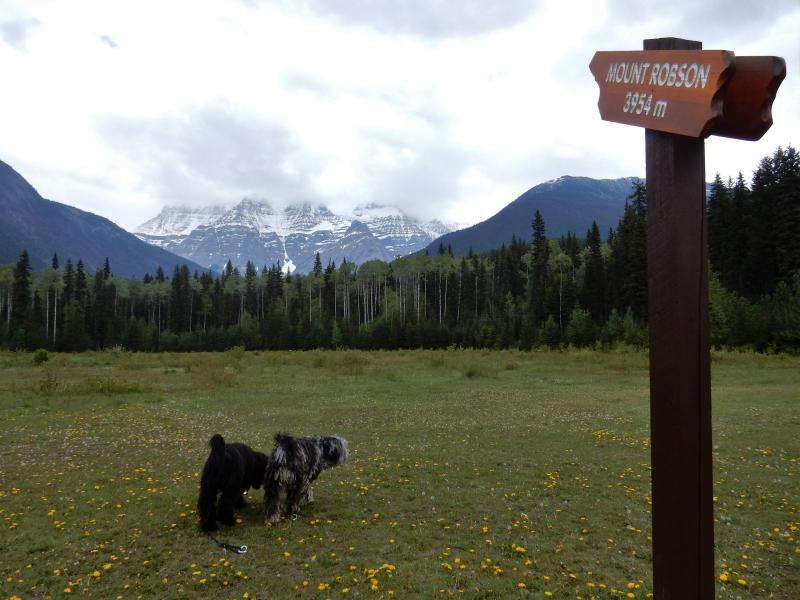 Mount Robson (3.954 m hoch)