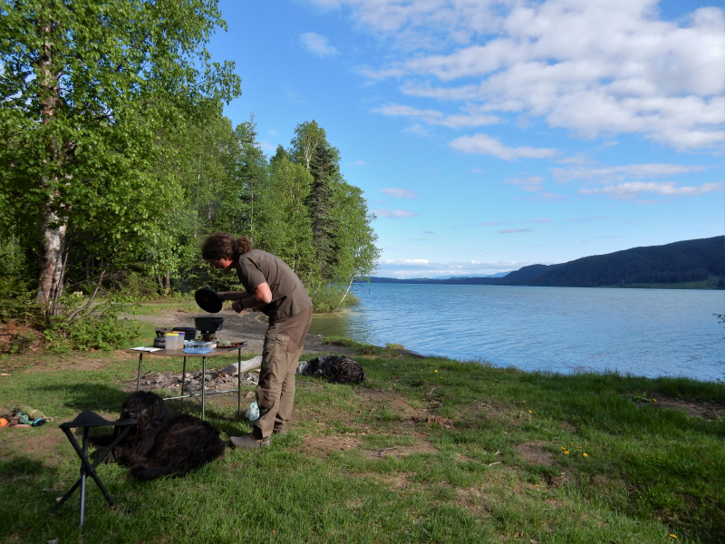 zurück am Meziadin Lake