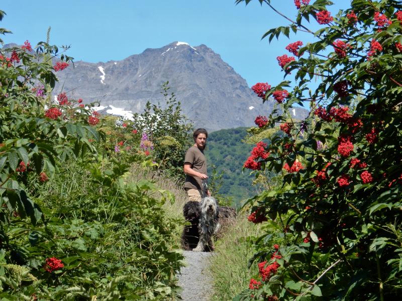 Spaziergang im Dschungel von Valdez