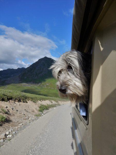 auf zum Hatcher Pass