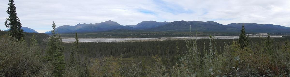 Aussicht zum Kluane River