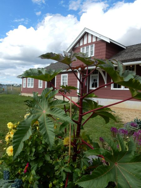 Visitorcenter von Dawson Creek