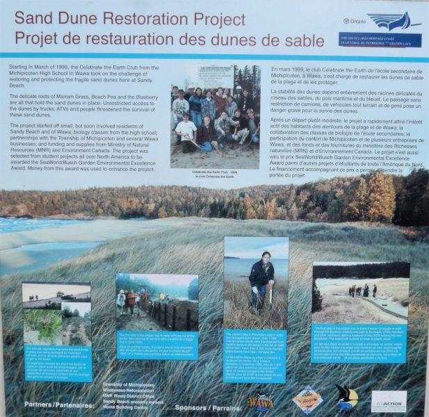 Restauration der Dünen