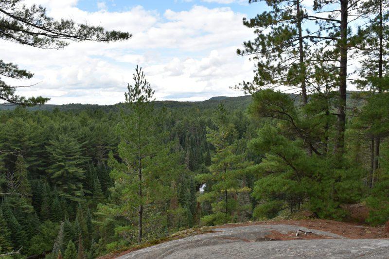 hochragende Felswände und über 2456 Seen